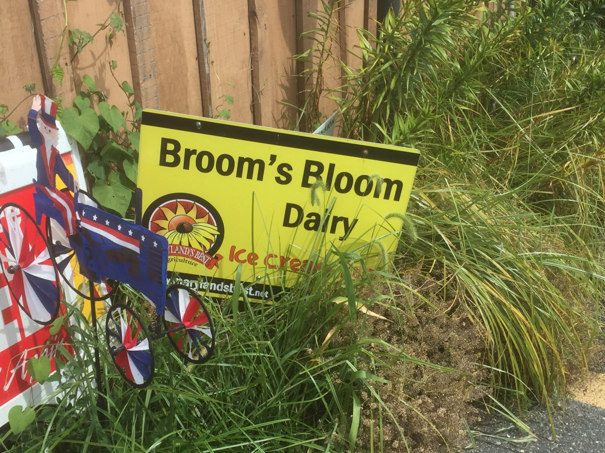 Broom's Bloom Dairy – 5th Stop on the 2015 Maryland Ice Cream Trail
