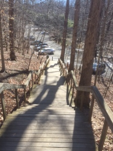 Scotts Run Steps
