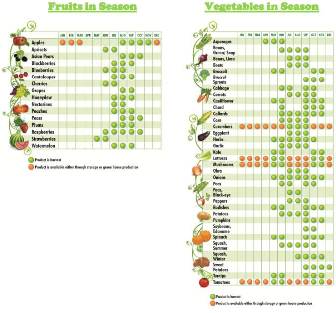 maryland-fruit-and-vegetable-seasonality-charts